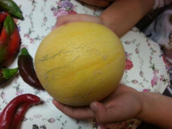ripemelon